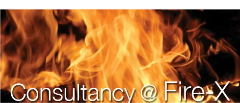 Consultancy at Fire-X